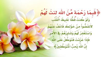 شبكة المعارف الإسلامية الرفق في القرآن الكريم